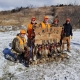 Pheasant Hunting with Triple T Hunting