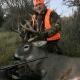 Rifle Deer Hunting at Triple T