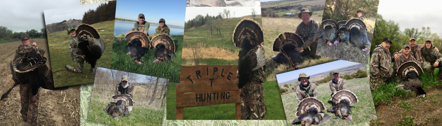 Turkey Hunting with Triple T Hunting Adventures